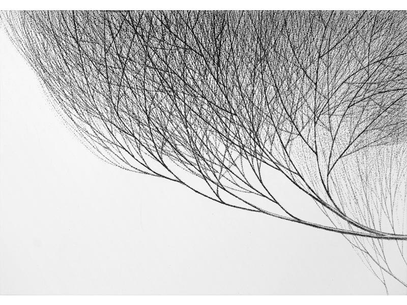 Association-Hiroko-Okamoto-Galerie-Nature-En_Haut_IV