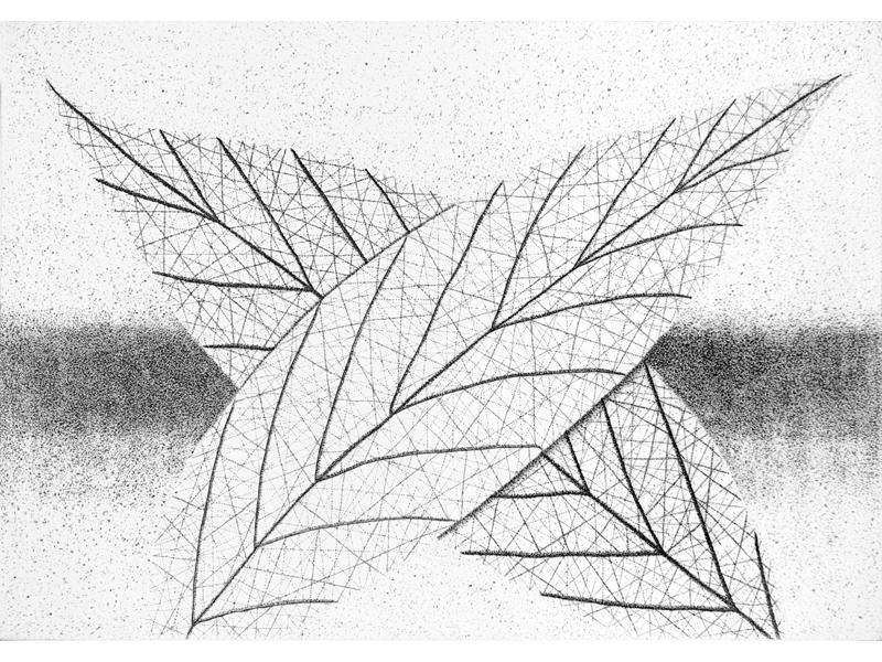 Association-Hiroko-Okamoto-Galerie-Nature-Intimite_IV