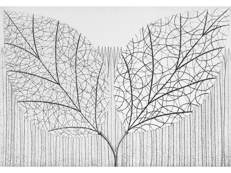 Association-Hiroko-Okamoto-Galerie-Nature-Intimite_VII