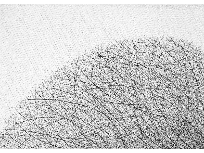 Association-Hiroko-Okamoto-Galerie-Nature-La_Pluie_VIII