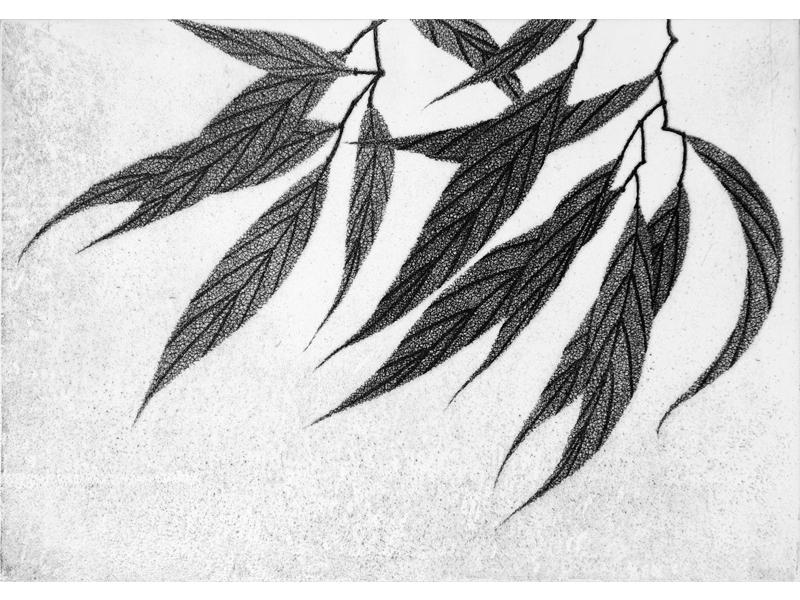Association-Hiroko-Okamoto-Galerie-Nature-Un_Instant_I