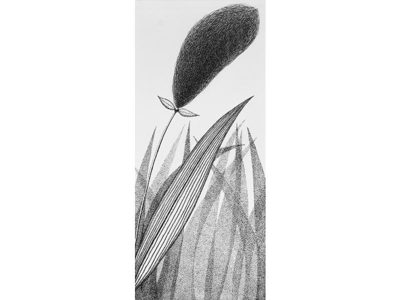 Association-Hiroko-Okamoto-Galerie-Nature-Un_Instant_IV