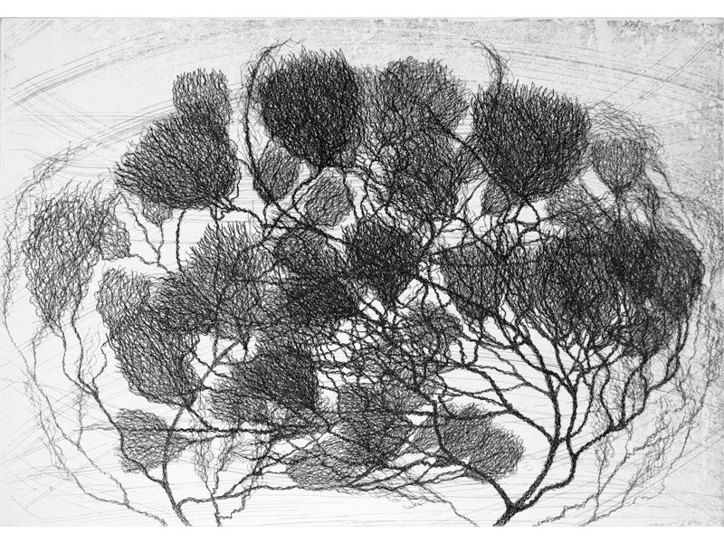 Association-Hiroko-Okamoto-Galerie-Nature-Une_Rencontre_II